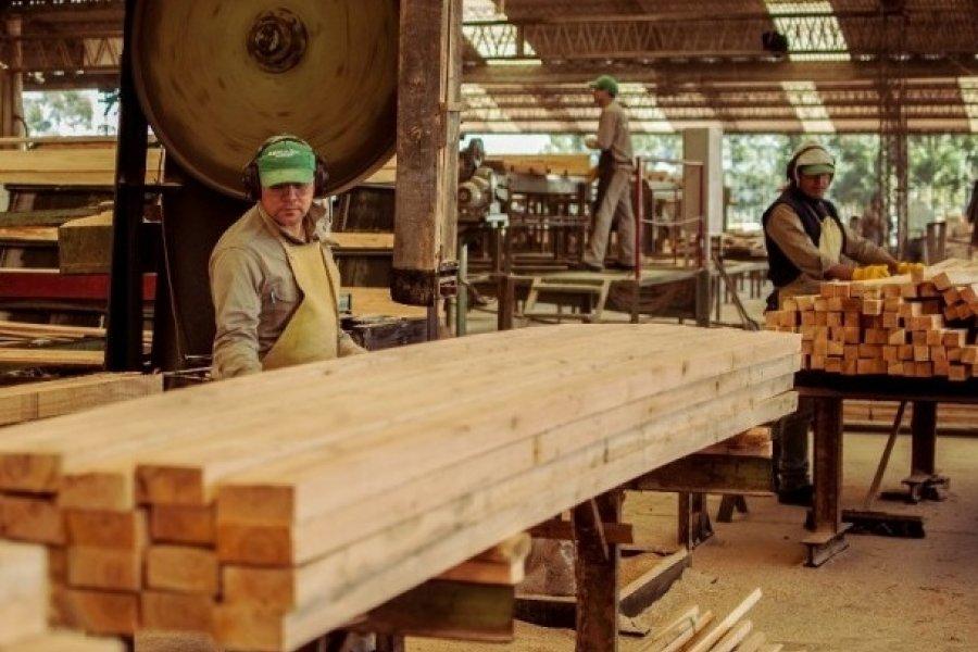 Incentivan la construcción de casas de madera en Corrientes