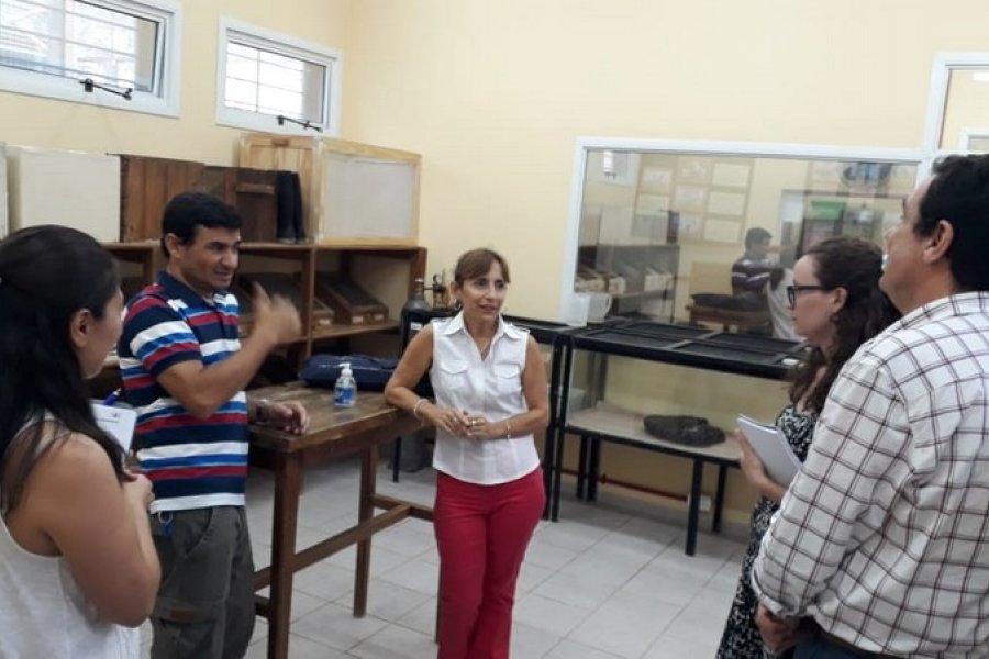 Corrientes: Laboratorio interesado en adquirir veneno de serpientes de la región para su producción de suero antiofídico