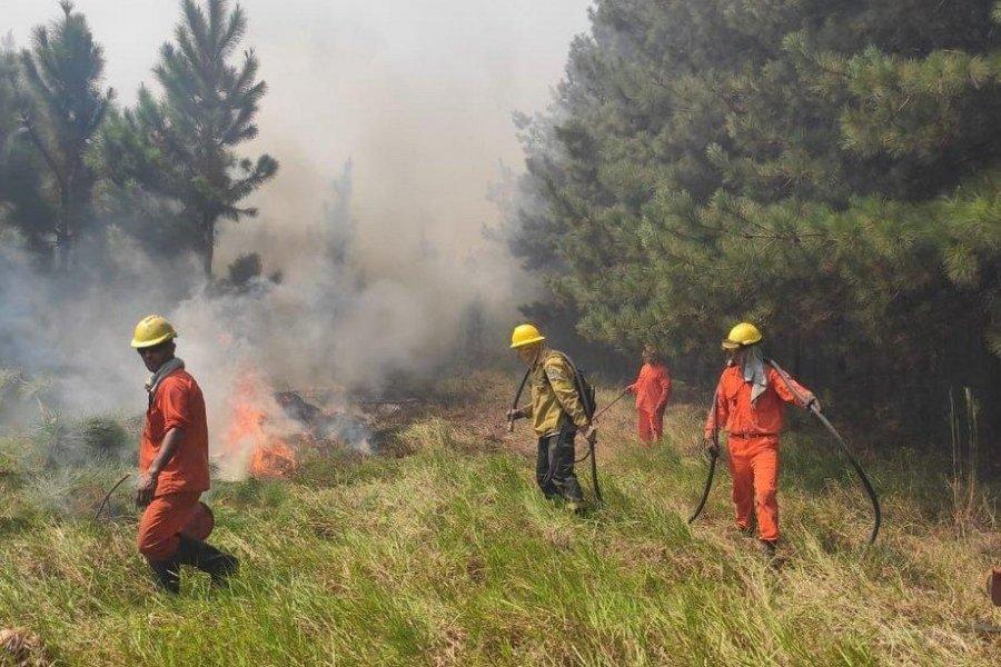 Nueve localidades en alerta por alto riesgo de incendios por la sequía