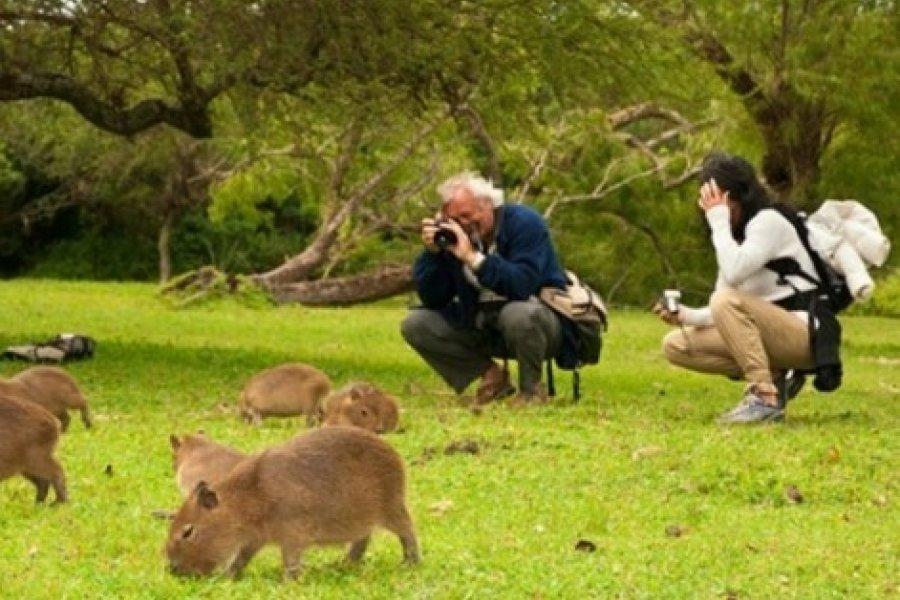 Corrientes: Habilitan el ingreso de visitantes al Parque Iberá