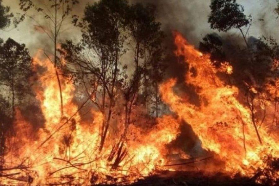 Corrientes: Preocupan los incendios forestales y no hay aviones hidrantes