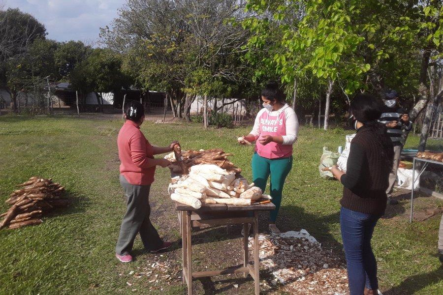 Productoras fabricaron almidón con mandioca traída de San Miguel