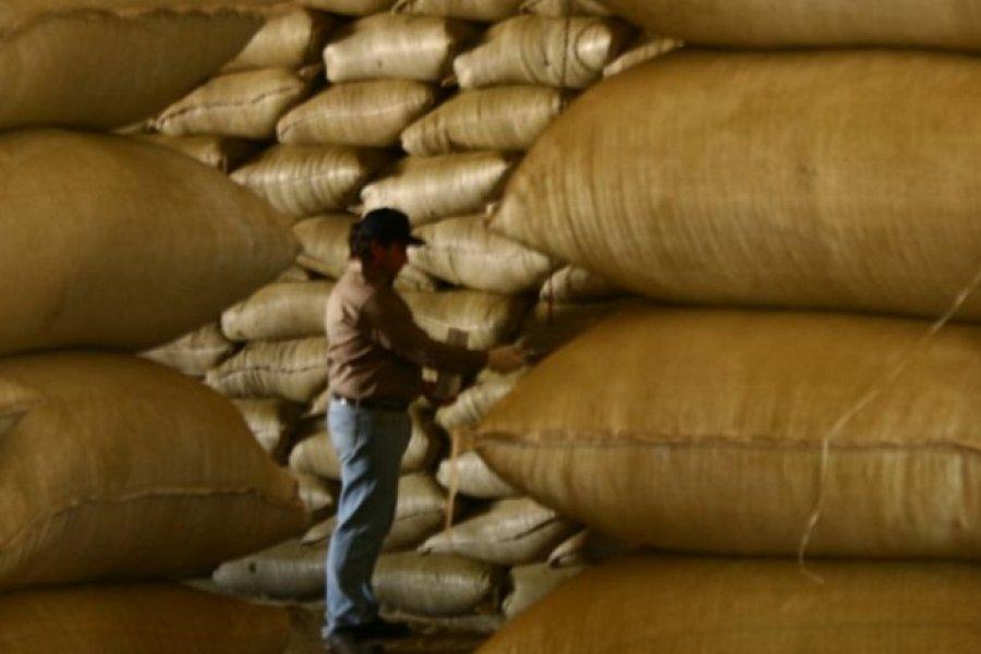 La yerba mate sigue sumando calidad y beneficios a la salud