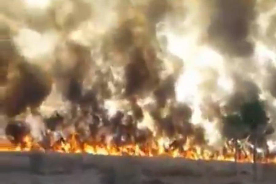Impactante incendio afectó 600 hectáreas del Parque Nacional Chaco
