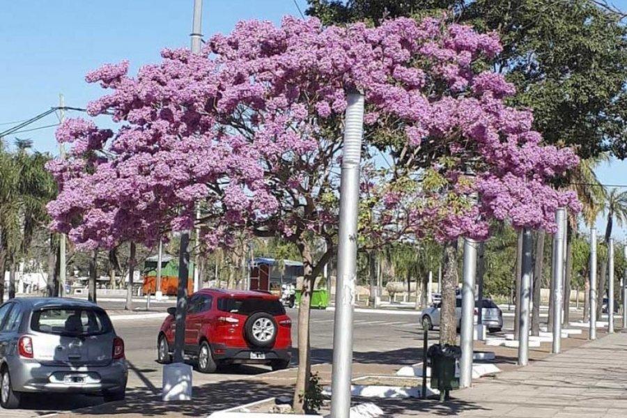 Se espera un sábado caluroso en Corrientes