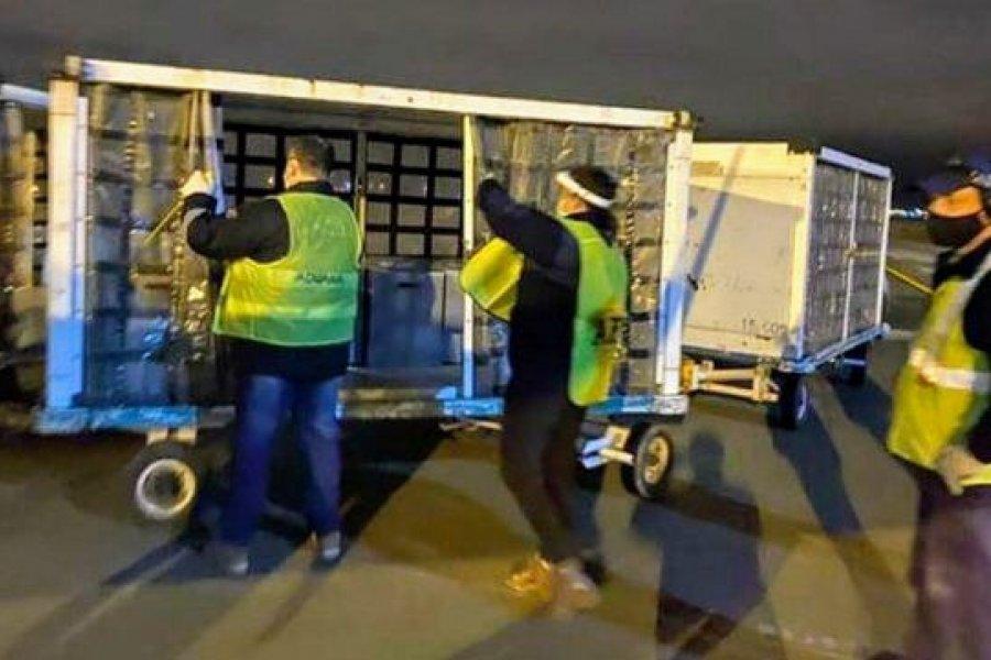 Llegaron 32 respiradores que envió la fundación de Lionel Messi