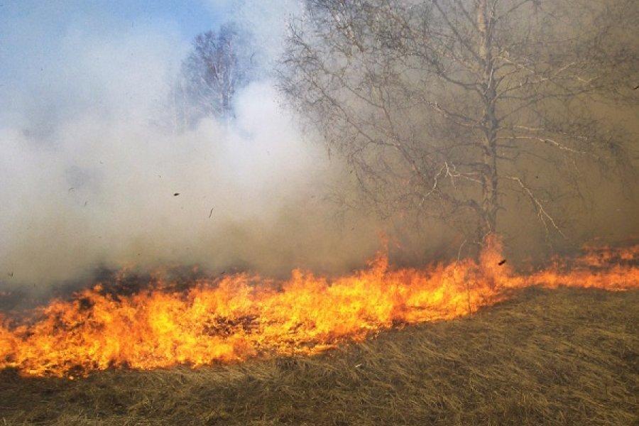 Humo en la Capital: Al menos 25 incendios de pastizales redujeron la visibilidad