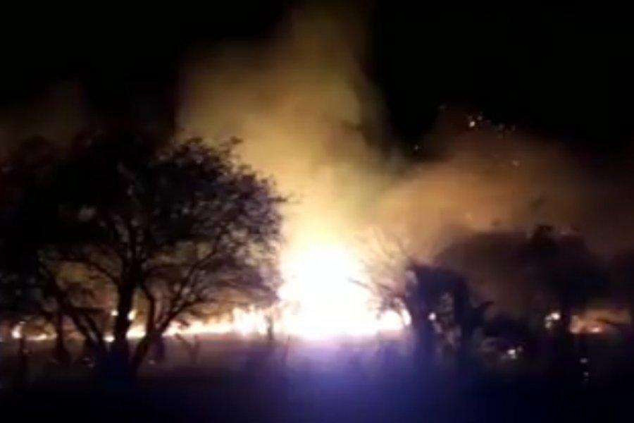 Un incendio consumió 10 hectáreas en Colonia Carolina