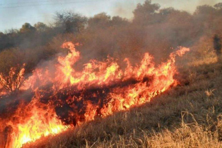 Ambientalista pide que se declare la emergencia por los incendios en Corrientes