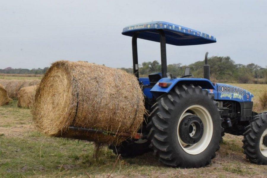 Entregaron rollos de pasturas pequeños productores para afrontar la seca