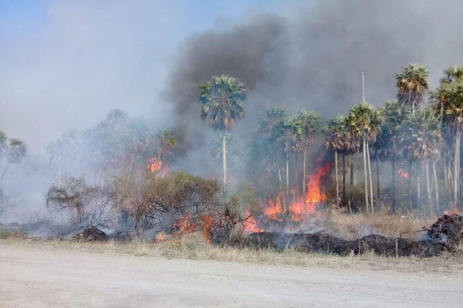 Alertan que en Formosa ya se quemaron 40.000 hectáreas