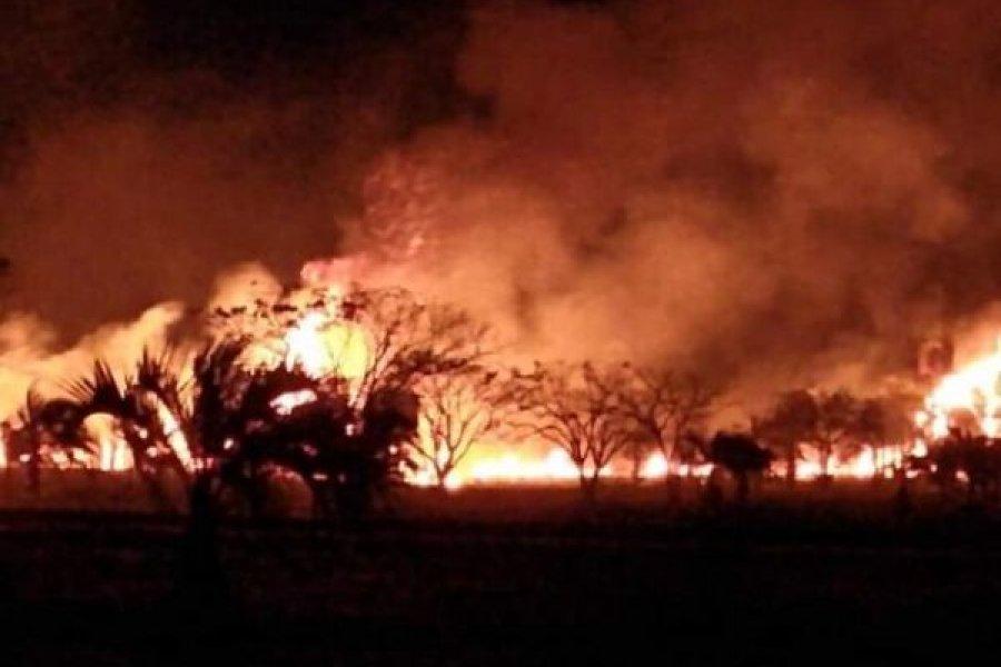 Preocupante cifra de incendios de pastizales por día en Capital
