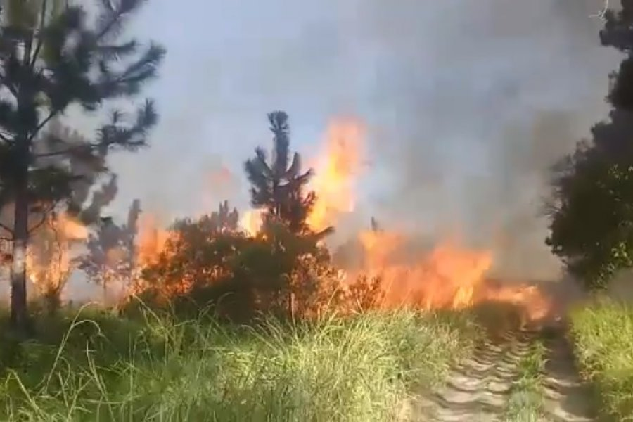 San Miguel: Bomberos controlaron un incendio tras 4 horas de trabajo