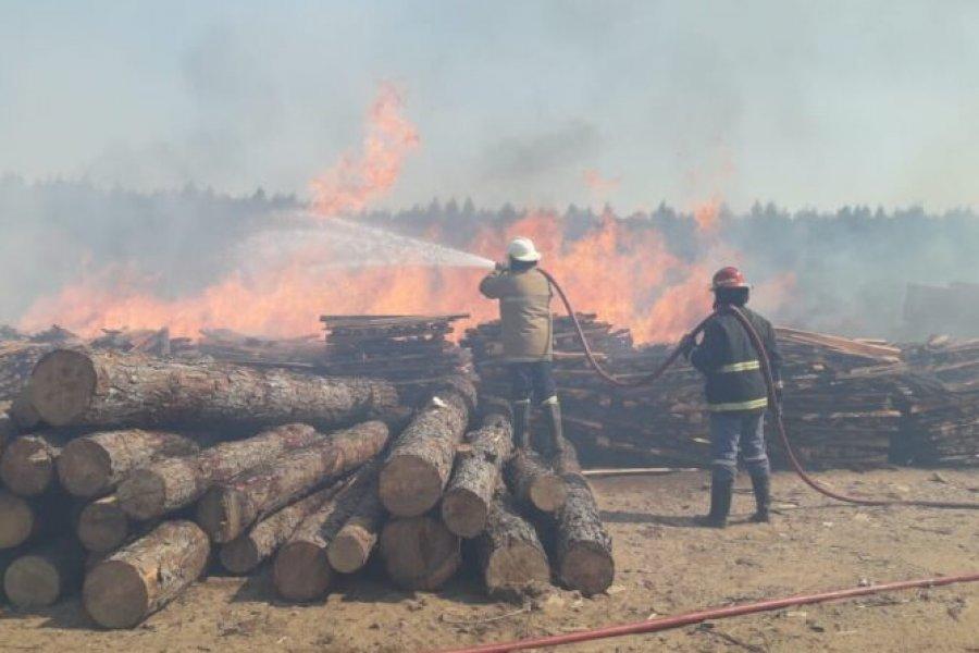 Se incendiaron cuatro aserraderos en Santa Rosa y hay preocupación