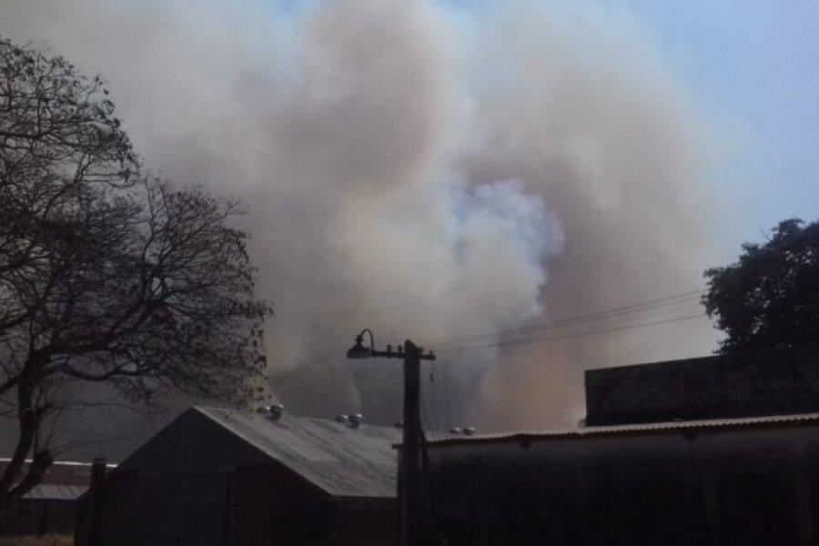 """Incendio en el INTA: """"Hay perdidas irrecuperables"""""""