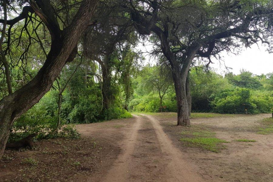 Financiamiento internacional para el Ecoturismo comunitario en el Parque Nacional El Impenetrable