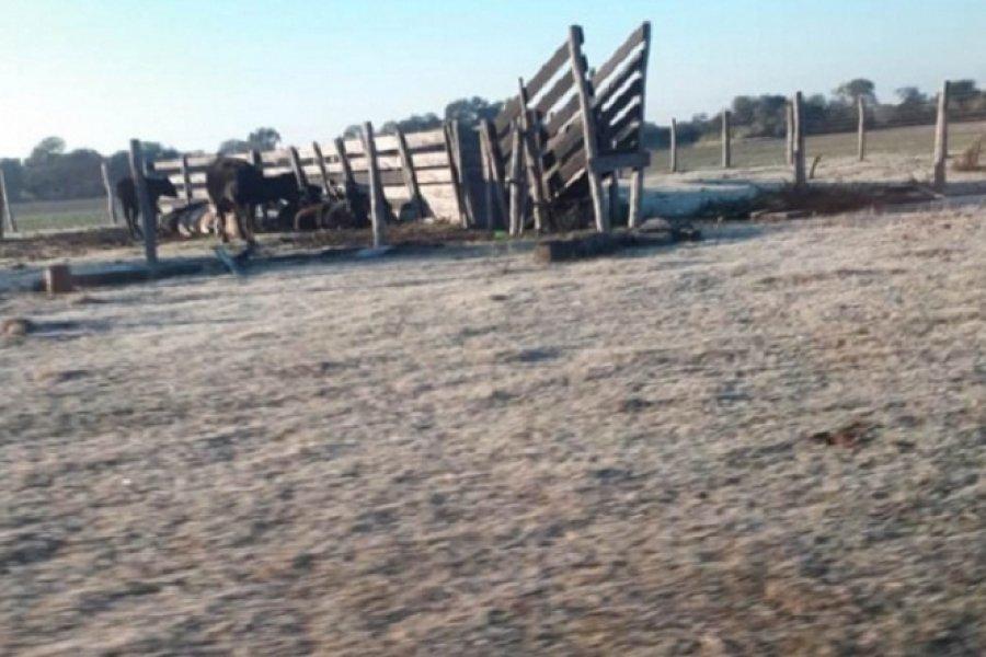 Chaco: Sáenz Peña fue la ciudad más fría del país con -5.9°