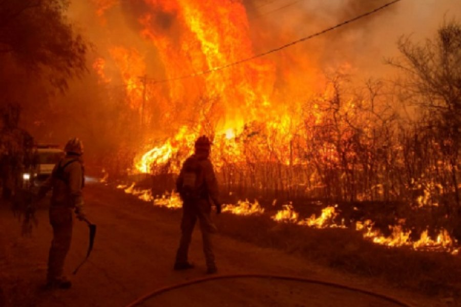 Corrientes: Ya se contabilizan 700 mil hectáreas quemadas