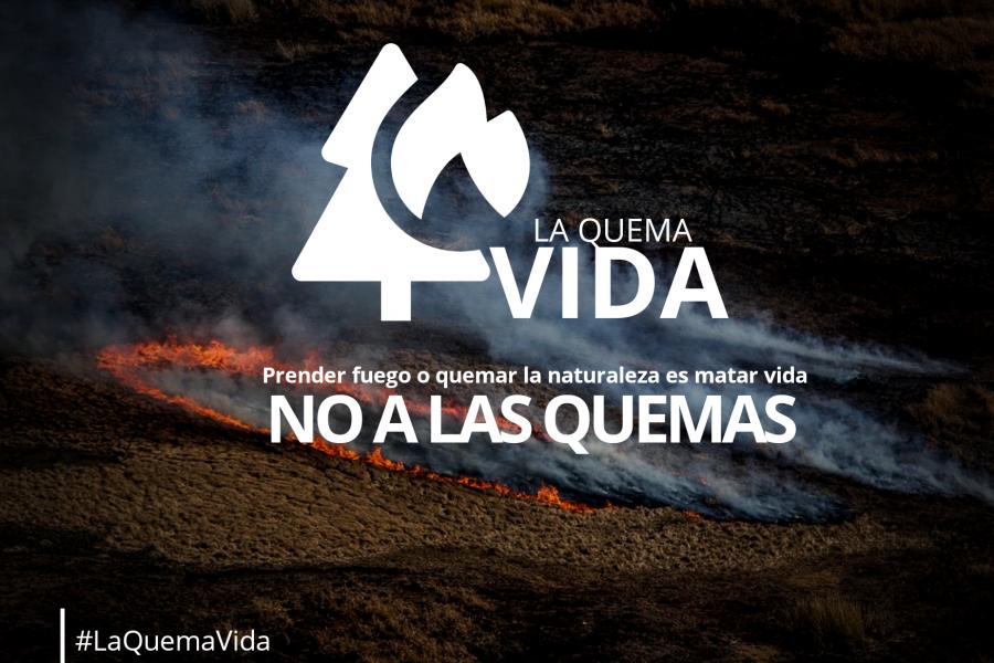 """Lanzan campaña """"La quema vida"""" para concientizar sobre los incendios"""