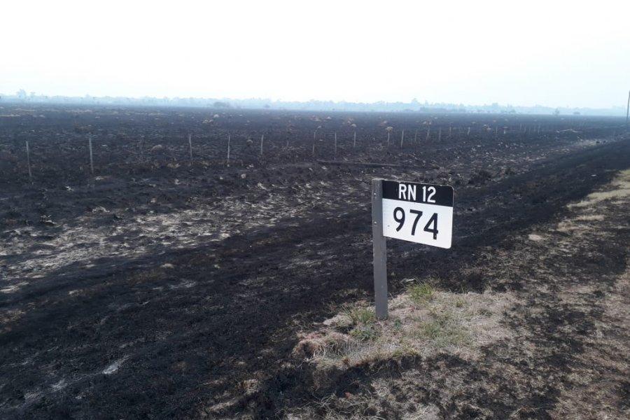 Buscan al autor de un incendio que convirtió en cenizas un campo
