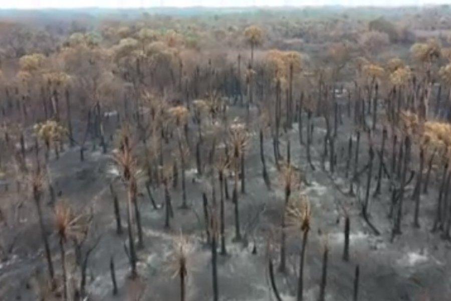 VIDEO- Impactantes imágenes de como quedó el Parque provincial San Cayetano