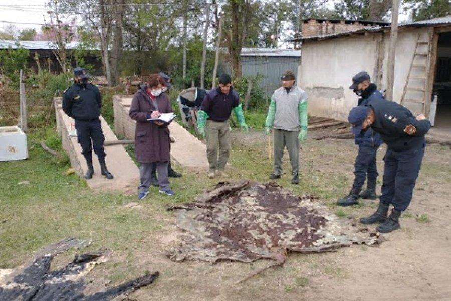 Prevención del Abigeato: Continúan los operativos  en el Interior