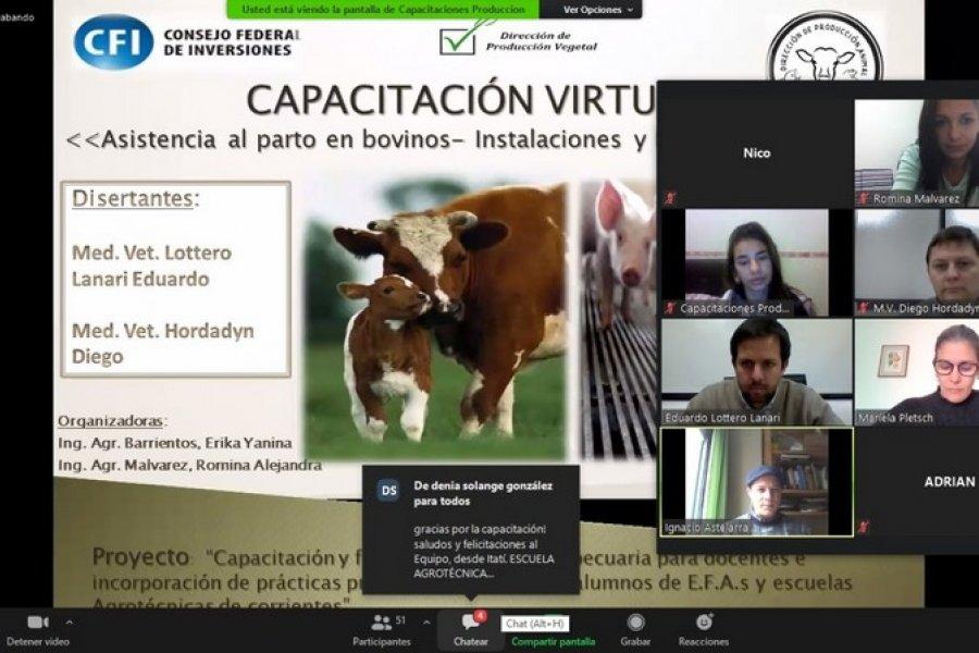 Se realizó una capacitación virtual en producción animal a EFAs y Agrotécnicas