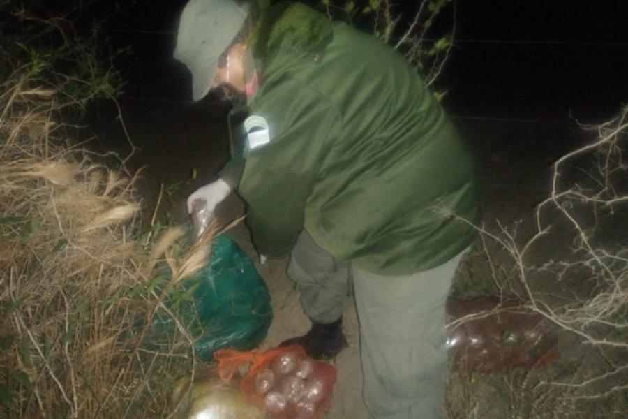 Gendarmería incautó 82 paquetes de marihuana en Ruta 12