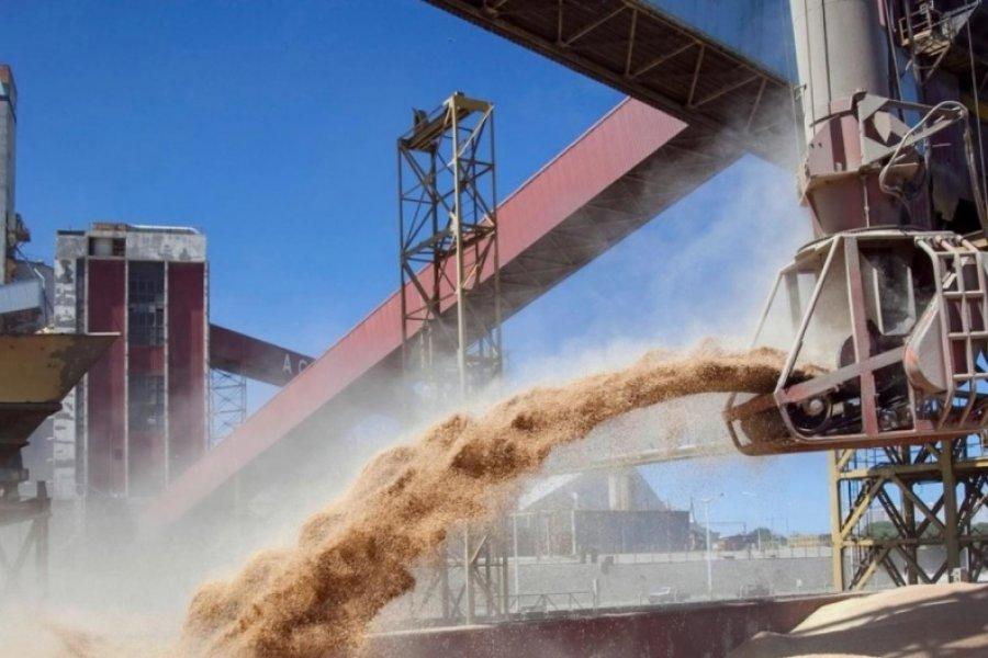 Siete años de prisión por defraudación fiscal en comercio de granos