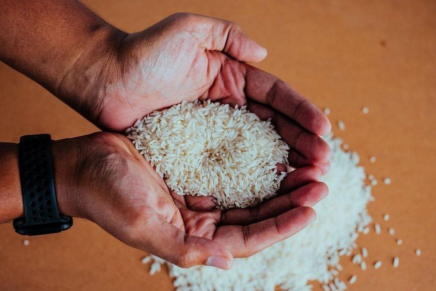 Productores correntinos destacan el crecimiento del consumo de arroz en Argentina
