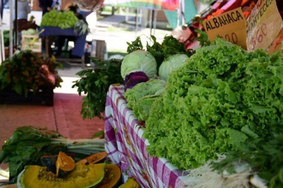 Productores ofrecerán productos frescos en plaza La Cruz