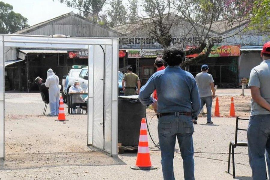 Coronavirus: Realizaron más de 300 hisopados en el Mercado Central