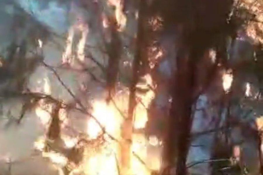 Avanza el incendio forestal en Villa Olivari