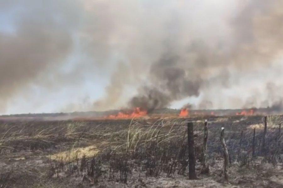 Lograron extinguir el  incendio pero el humo dificulta la visión en Ruta 12