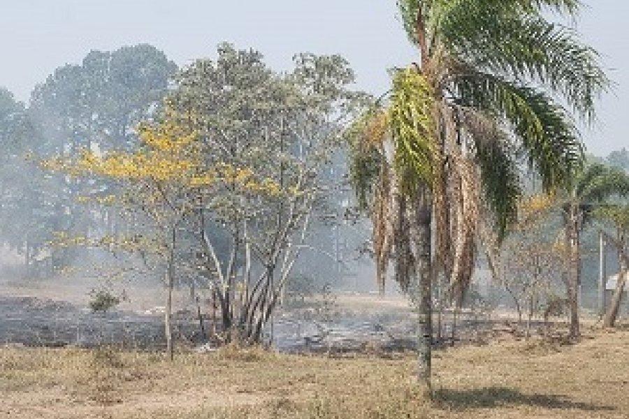 VIDEO- Macabro hallazgo: Habrían ocasionado el incendio para ocultar el cadáver