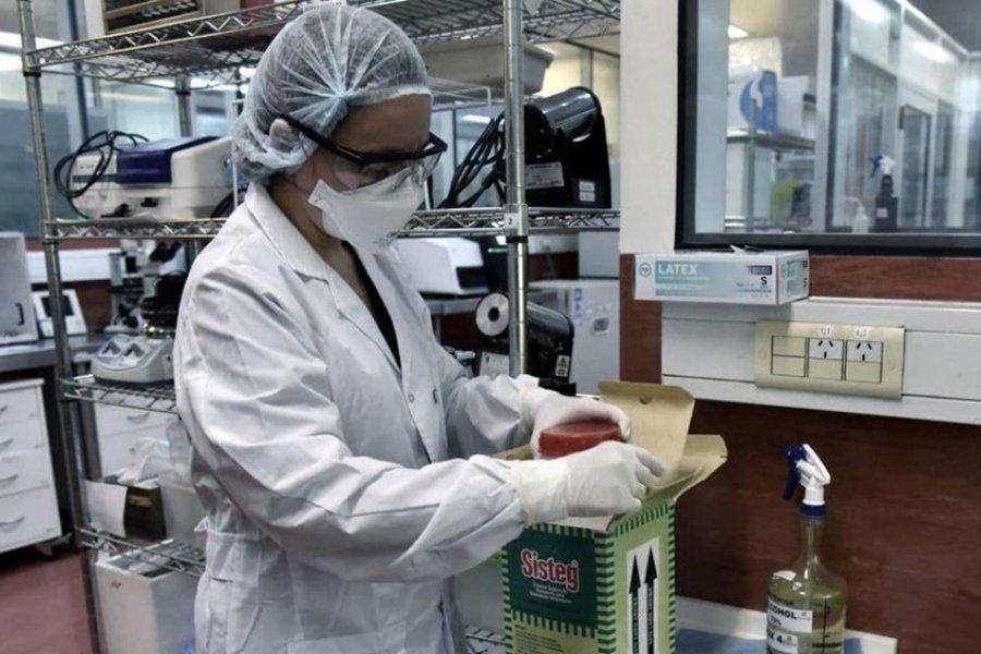 Con 11.249 nuevos casos, Argentina superó los 700.000 contagios de Coronavirus