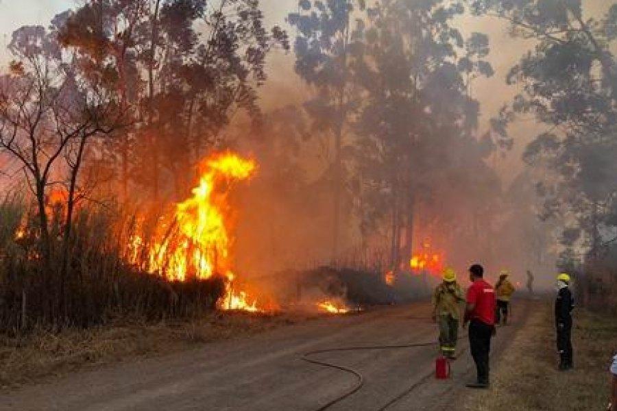 El fuego consumió más de 400 hectáreas en 3 de Abril