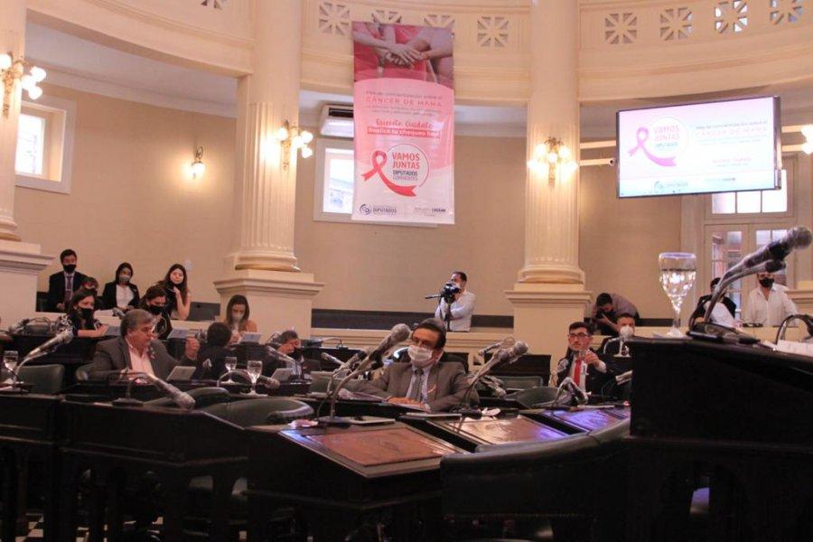 La Cámara de Diputados sancionó leyes para dar solución habitacional a dos comunidades