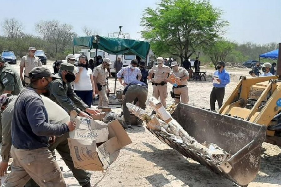 Chaco: Incineran marihuana, cocaína y mercadería ilegal decomisada en diversos procedimientos