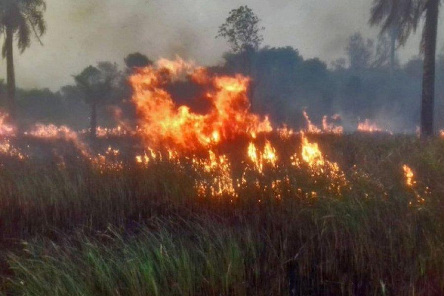 Corrientes: Con avión hidrante combatirán los incendios