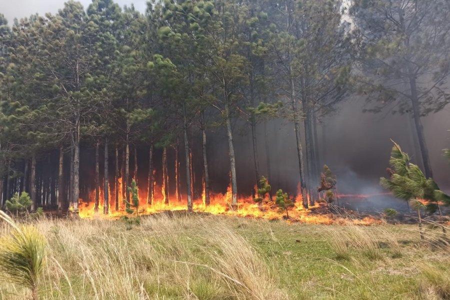 El fuego sin control amenaza zonas pobladas de un paraje en San Miguel