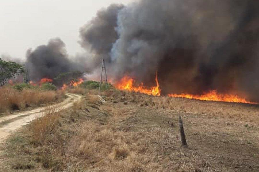 Incendio en Santa Ana