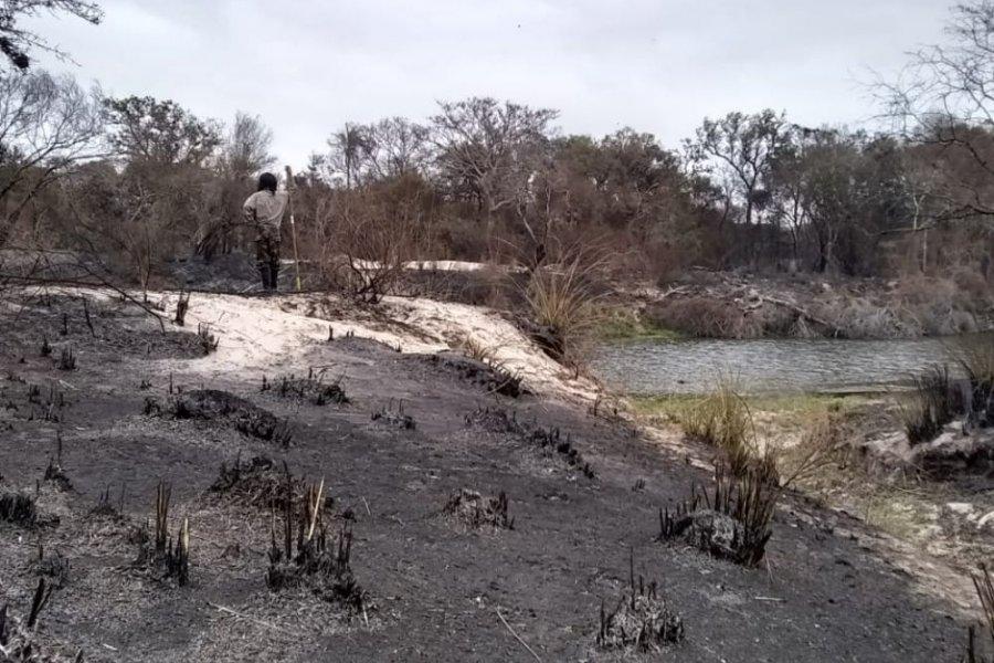 Tras la difícil jornada de ayer, hoy no se registraron incendios en Corrientes