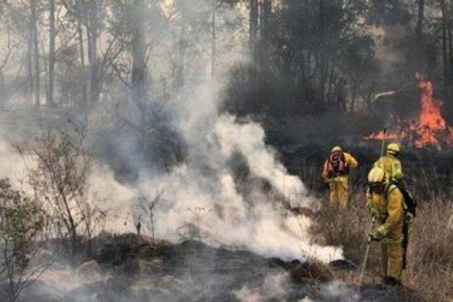 Corrientes: Se controlaron los incendios pero se sigue en alerta