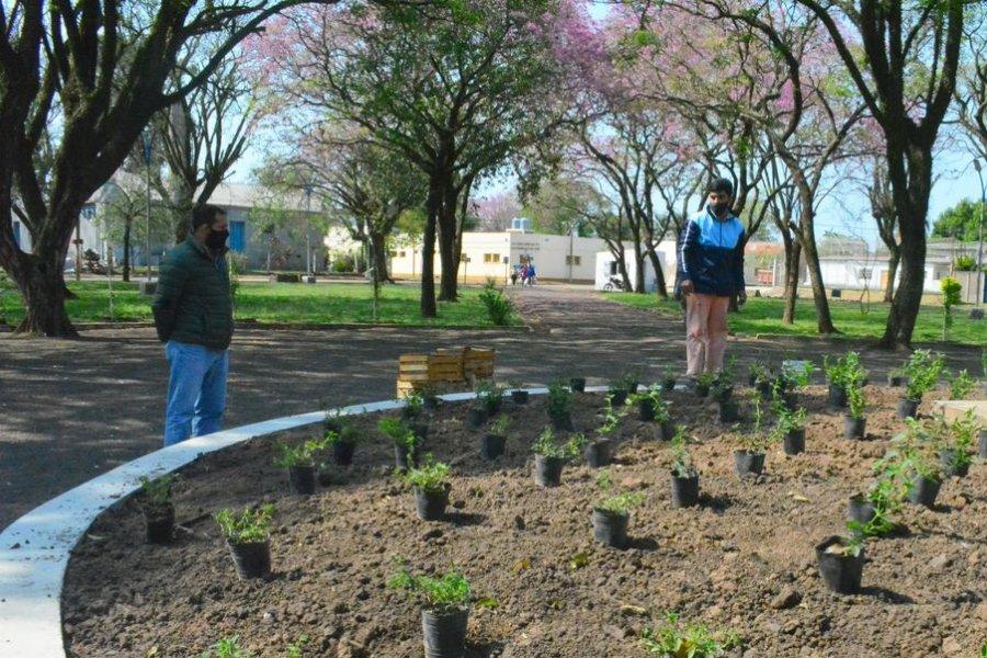 Continúan las obras en la intendente Plaza Rafael Flores