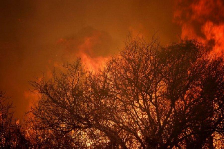 Córdoba: Dictan prisión preventiva para dos imputados por causar un incendio que afectó a miles de hectáreas