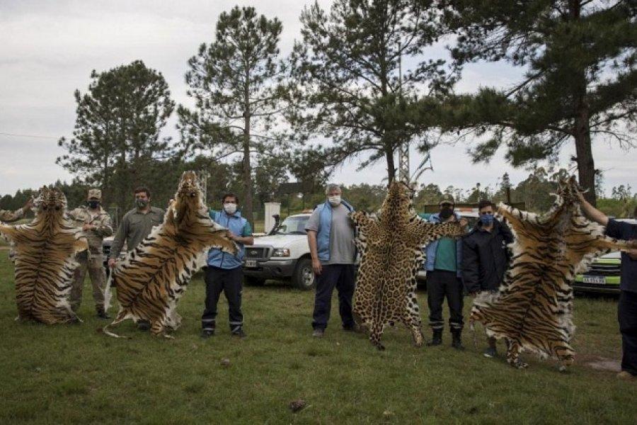 Entre Ríos: Faltaban animales en un zoo y encontraron los cueros