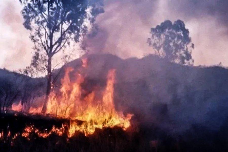 Greenpeace advierte que el fuego ya arrasó casi 5.000 hectáreas del Parque Nacional Calilegua