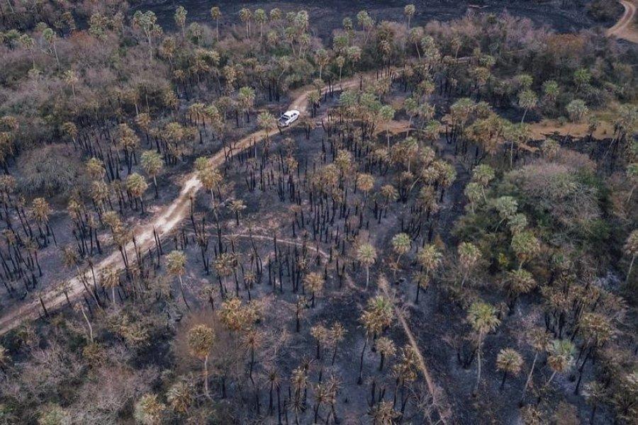 El fuego consumió más del 90% del Parque provincial San Cayetano