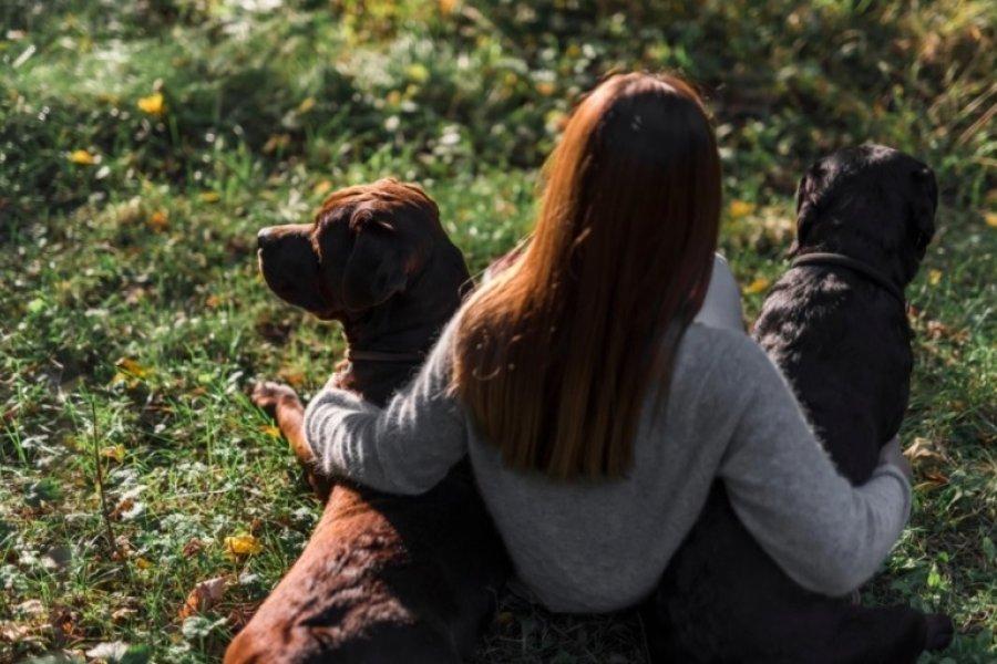 El misterio de la relación entre perros y humanos